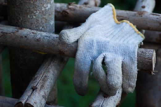 glove-843142_960_720