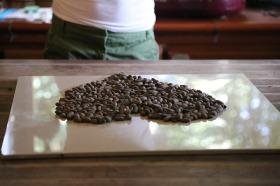 raw-cocao-nibs-688152_960_720